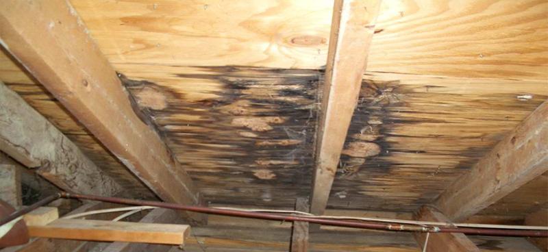 Roofleakrepairs_slider_2